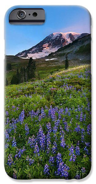 Meadow Photographs iPhone Cases - Light on the Mountain iPhone Case by Mike Dawson