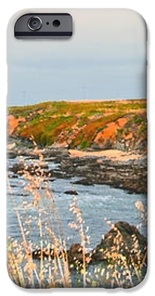Lighthouse in Summer iPhone Case by Artist and Photographer Laura Wrede