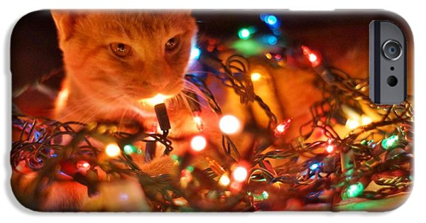 Lynda Dawson-youngclaus Photographer iPhone Cases - Lighting Up The Christmas Cat iPhone Case by Lynda Dawson-Youngclaus