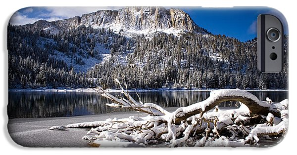 Snow Scene iPhone Cases - Lightly Powdered 2 iPhone Case by Chris Brannen