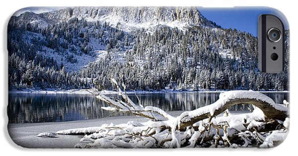 Snow Scene iPhone Cases - Lightly Powdered iPhone Case by Chris Brannen