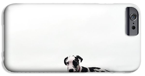 Dog Trots Photographs iPhone Cases - Like a puppy on a string iPhone Case by Richard Lawrence