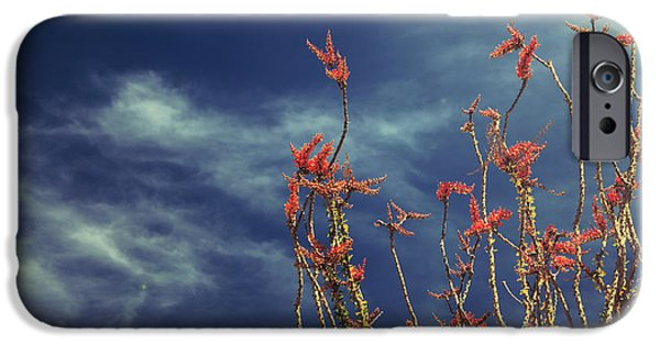 Laurie Search Photographs iPhone Cases - Like Flying Amongst the Clouds iPhone Case by Laurie Search