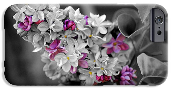Lilac Flower iPhone Cases - Lilac Flowers iPhone Case by Jai Johnson