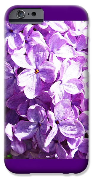 Lilac Flower iPhone Cases - Lilac iPhone Case by Irina Sztukowski