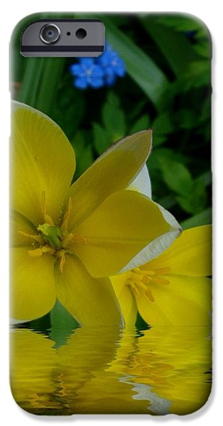 Waterscape Mixed Media iPhone Cases - Lilium Of Gold iPhone Case by Pepita Selles