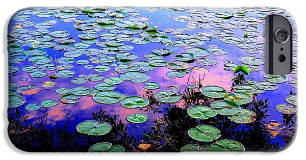 Lilly Pads iPhone Cases - Lilly Pad Sunset iPhone Case by Wendell Lowe