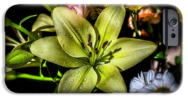 Stamen Digital iPhone Cases - Lily iPhone Case by Adrian Evans