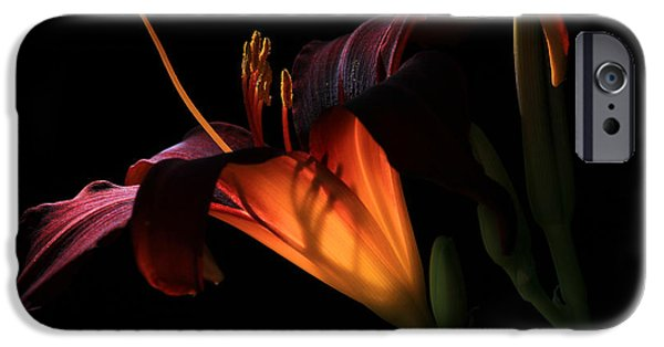 Summer iPhone Cases - Lily Ambiance iPhone Case by Donna Kennedy