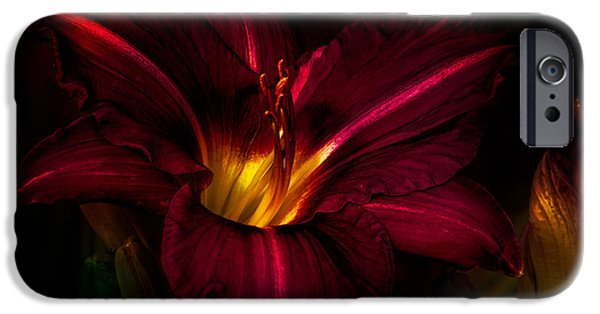 Drama iPhone Cases - Lily Number Nine iPhone Case by Bob Orsillo