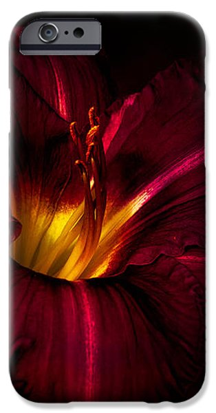 Day Lilies iPhone Cases - Lily Number Nine iPhone Case by Bob Orsillo