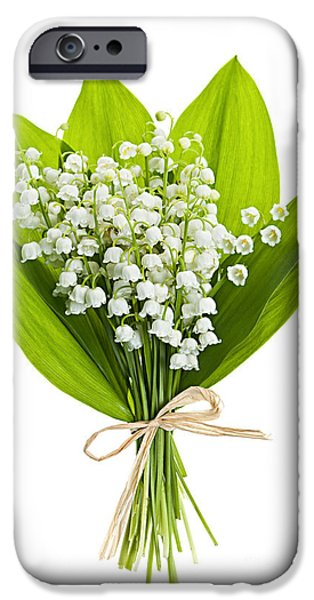 Tender iPhone Cases - Lily-of-the-valley bouquet iPhone Case by Elena Elisseeva