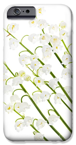 Cutouts Photographs iPhone Cases - Lily-of-the-valley flowers iPhone Case by Elena Elisseeva