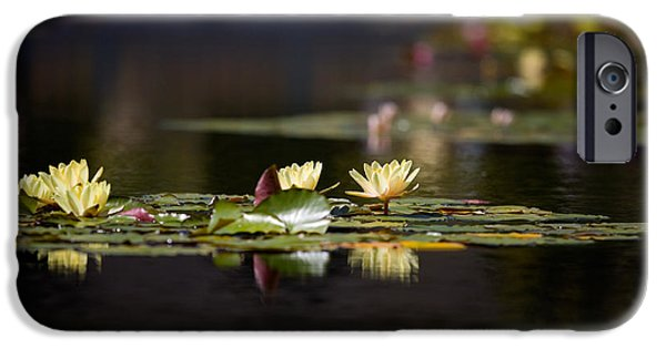 Waterlily iPhone Cases - Lily Pond iPhone Case by Peter Tellone