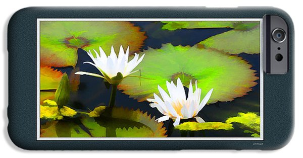 Artistic Photography iPhone Cases - Lily Pond with digital mat iPhone Case by Tom Prendergast