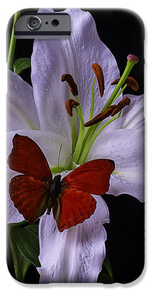 Recently Sold -  - Animals Photographs iPhone Cases - Lily With red Butterfly iPhone Case by Garry Gay