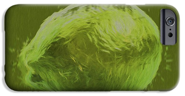 Painter Photographs iPhone Cases - Lime Food Digital Painting iPhone Case by David Haskett