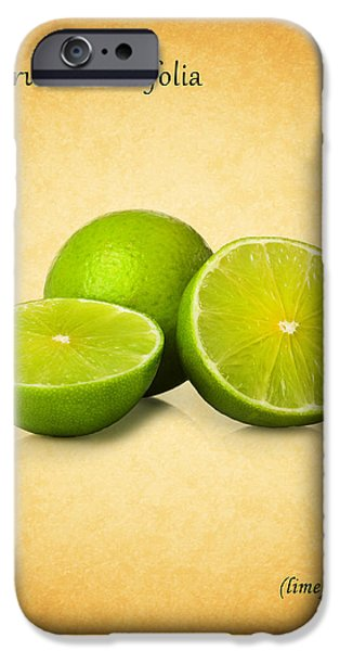 Lime iPhone Cases - Lime iPhone Case by Mark Rogan