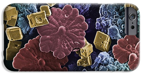Scanning Electron Microscope Photographs iPhone Cases - Limescale, Sem iPhone Case by Science Photo Library