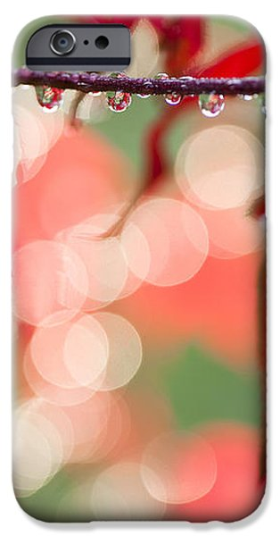 Line of Reflections iPhone Case by Anne Gilbert
