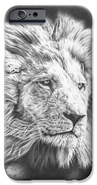 African Lion Art iPhone Cases - Lion drawing 2 iPhone Case by Heidi Vormer