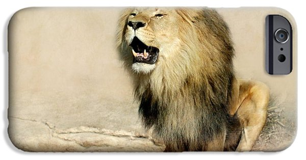 Animals Photographs iPhone Cases - Lion iPhone Case by Heike Hultsch