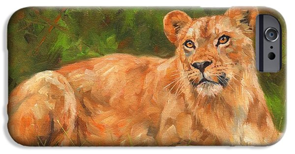 Lioness iPhone Cases - Lioness iPhone Case by David Stribbling