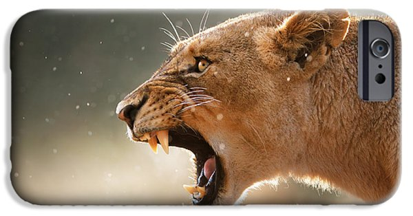Nobody Photographs iPhone Cases - Lioness displaying dangerous teeth in a rainstorm iPhone Case by Johan Swanepoel