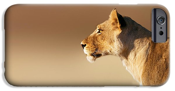 Profile iPhone Cases - Lioness portrait iPhone Case by Johan Swanepoel