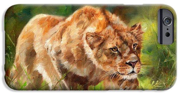 Safari Prints iPhone Cases - Lioness Stalking iPhone Case by David Stribbling