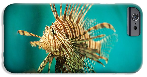 Wild Animals Pyrography iPhone Cases - Lionfish iPhone Case by Mariana Lisina