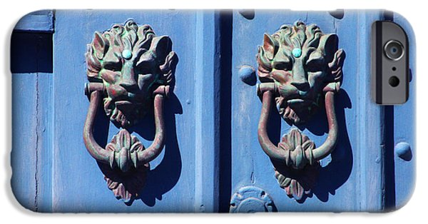 Cambria iPhone Cases - Lions on Blue Door iPhone Case by Art Block Collections