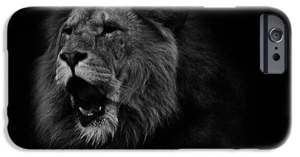 Lion Photographs iPhone Cases - Lions Roar iPhone Case by Martin Newman