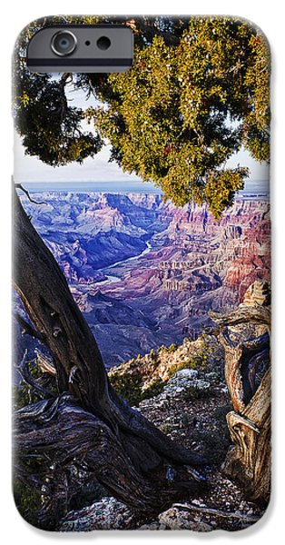 Grand Canyon iPhone Cases - Lipan Point View iPhone Case by Priscilla Burgers