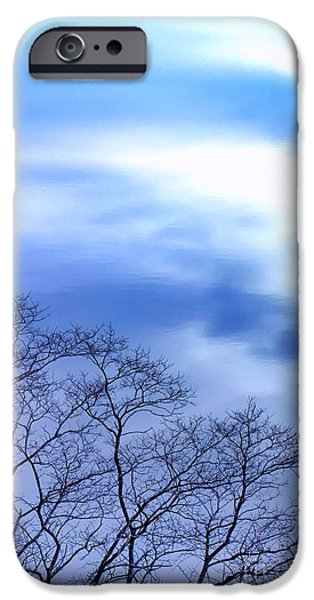 Winter Trees Photographs iPhone Cases - Liquid Sky iPhone Case by Olivier Le Queinec