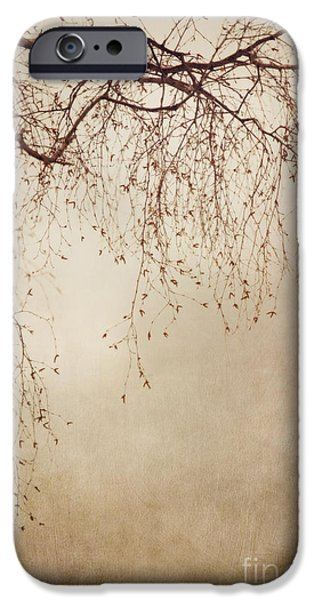 Filigree iPhone Cases - Listen Closely  iPhone Case by Priska Wettstein