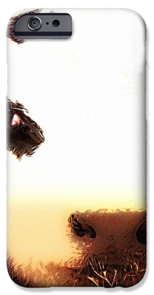 Little Black Baldy iPhone Case by Barbara Chichester