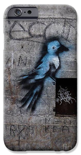 Spray Paint iPhone Cases - Little Blue Bird Graffiti iPhone Case by Edward Fielding