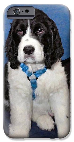 Puppy Digital iPhone Cases - Little Boy Blue oil iPhone Case by Steve Harrington