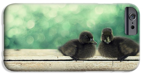 Baby Bird iPhone Cases - Little Buddies iPhone Case by Amy Tyler