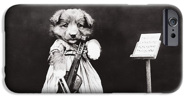 Black Dog iPhone Cases - Little fiddler iPhone Case by Aged Pixel