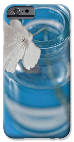 Little iPhone Cases - Little Flower In A Vase iPhone Case by Frank Tschakert