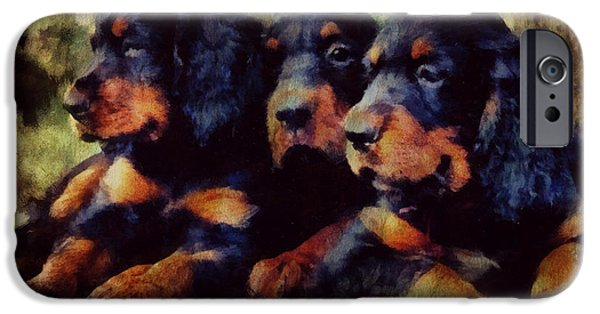 Gordon Setter Puppy iPhone Cases - Little Gordons In A Huddle  iPhone Case by Janice MacLellan