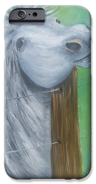 Gray Hair Paintings iPhone Cases - Little Grey Has An Itch iPhone Case by I F Abbie Shores