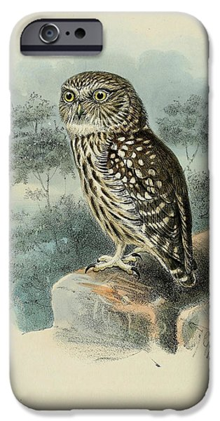 Little iPhone Cases - Little Owl iPhone Case by J G Keulemans