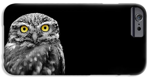 Little Photographs iPhone Cases - Little Owl iPhone Case by Mark Rogan