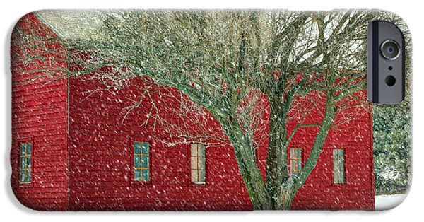 Nebraska iPhone Cases - Little Red in Winter iPhone Case by Nikolyn McDonald