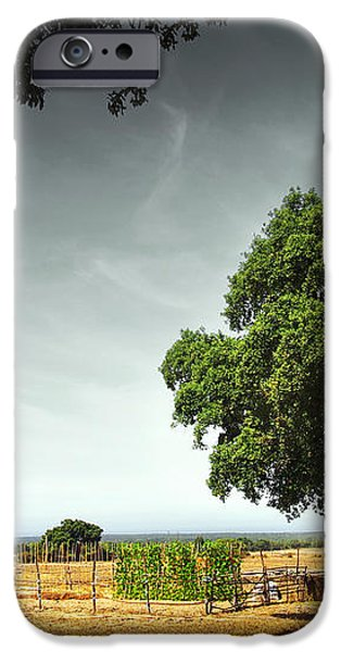 Little Rural House iPhone Case by Carlos Caetano