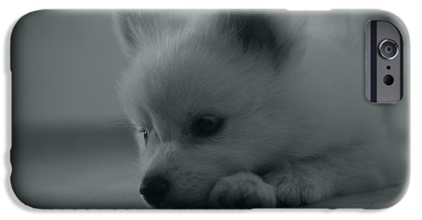 Dogs Pyrography iPhone Cases - Little sad dog iPhone Case by Victor Georgiev