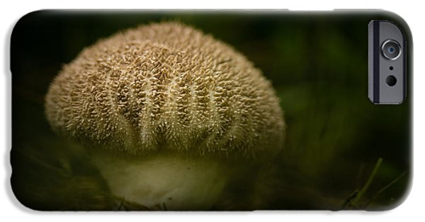 Mushrooms iPhone Cases - Little Shroom iPhone Case by Shane Holsclaw